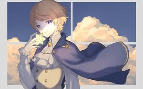 Picture boy, Prince, cloak