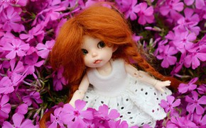 Picture doll, girl, red, Phlox