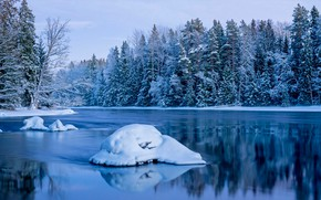 Picture winter, forest, snow, trees, river, blue