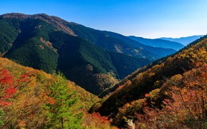 Picture autumn, forest, the sky, the sun, trees, mountains, Japan, Nara Park
