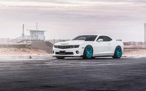 Picture Chevrolet, Camaro, Wheels, MRR