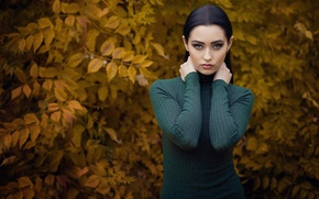 Picture autumn, leaves, branches, nature, pose, background, model, portrait, makeup, dress, brunette, hairstyle, beautiful, yellow, Nastya, …