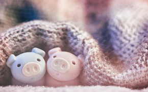 Picture toys, blanket, cute, pigs