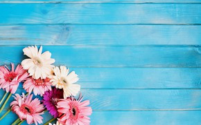 Picture flowers, bouquet, gerbera