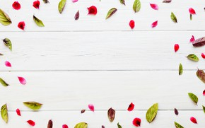 Picture Leaves, Petals, Texture, Wooden background