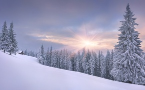 Picture winter, forest, the sky, the sun, clouds, rays, snow, landscape, view, tale, ate, slope, frost, ...
