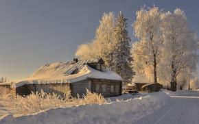 Picture winter, morning, village, Arkhangelsk oblast, Saunino