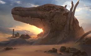 Picture stones, desert, head, lizard, Desert of the Glorified