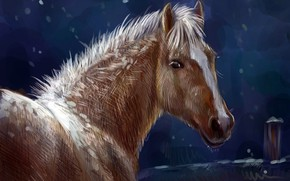 Picture horse, horse, pencil, oil, art, nature, horse, winter, painting painting, painting, gouache, wallpaper., watercolor, night ...