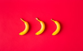 Picture yellow, three, fruit, red background, Baban