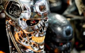 Picture metal, skull, Terminator, cyborg