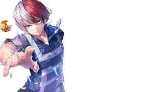 Picture anime, art, guy, Boku no Hero Academy, My heroic academia, Todoroki shouto