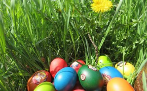 Picture grass, eggs, Easter, spring 2018, meduzanol ©