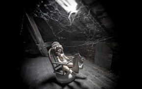 Picture house, web, doll, attic