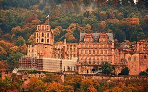 Picture autumn, trees, castle, Germany, Heidelberg