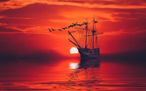 Picture sea, the sky, birds, surface, ship, calm