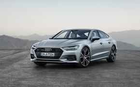 Picture Quattro, 2018, Sportback, Audi A7