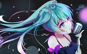Picture Background, Vocaloid, Hatsune Miku
