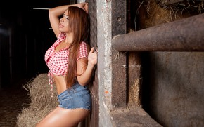 Picture pose, model, shorts, makeup, figure, hairstyle, hay, topic, is, redhead, sexy, the wall, stable, he …