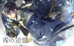 Picture anime, petals, art, guy, Touken ranbu, Dance Of Swords