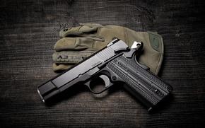 Picture Valkyrie, Dan Wesson, gun background