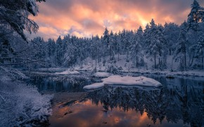 Picture winter, forest, snow, trees, sunset, reflection, river, Norway, Norway, RINGERIKE, Ringerike