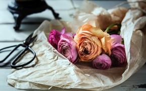 Picture flowers, paper, scissors