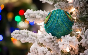Picture snow, toy, new year, ball, decoration, fir-tree branches