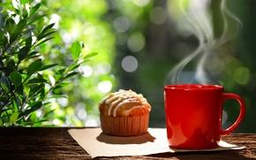 Wallpaper breakfast, coffee cup, Breakfast, cupcake, good morning, cupcake, hot, coffee, Cup