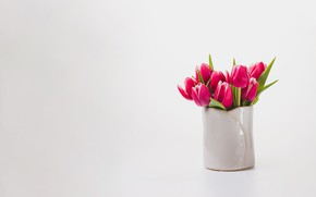 Picture background, bouquet, spring, tulips, vase