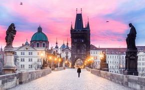 Picture tower, morning, Prague, Czech Republic, lights, Charles bridge