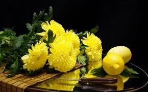 Picture flowers, lemon, knife, citrus, chrysanthemum