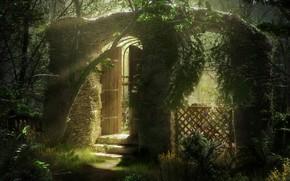 Picture light, vegetation, arch, stage, Overgrown Garden