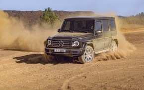 Picture movement, vegetation, Mercedes-Benz, dust, 2018, G-Class