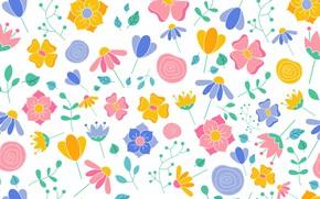 Picture flowers, texture, background, petals, floral