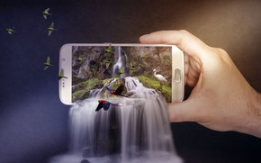 Wallpaper parrots, Heron, background, nature, waterfall, hand, birds, photoshop, smartphone, cascade