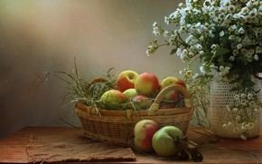 Picture summer, flowers, apples, August, still life, Apple spas