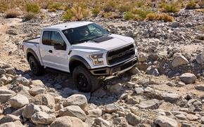 Wallpaper Ford, White, Stones, Car, Raptor, F-150, 2017