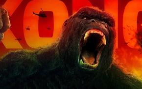 Wallpaper King Kong, cinema, movie, gorilla, film, strong, Kong, Kong: Skull Island, Skull Island