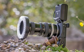 Picture macro, background, the camera, lens