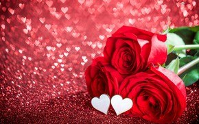 Picture love, flowers, holiday, roses, hearts, Valentine's day