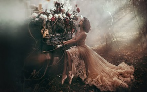 Picture forest, girl, light, trees, flowers, style, people, dress, haze, piano, peonies, ballet flats