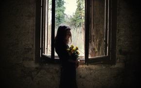 Picture girl, flowers, window