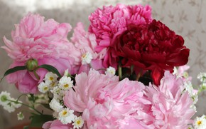 Picture flowers, bouquet, spring, pink flowers, peonies