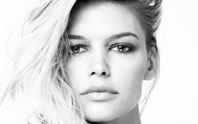 Picture portrait, look, hair, actress, model, Kelly Rohrbach, background white, model, actress, Kelly Rohrbach, white background, …