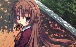 Picture pavers, package, schoolgirl, donut, long hair, Aisaka Taiga, Toradora!, big eyes, sideways, by Muririn