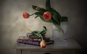 Picture flowers, style, books, tulips, still life