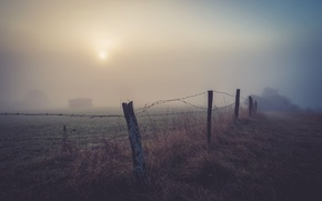 Picture night, fog, the fence
