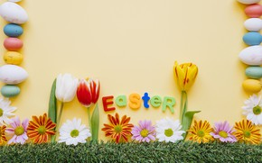 Picture Flowers, Spring, Tulips, Easter, Eggs, Weed, Holiday