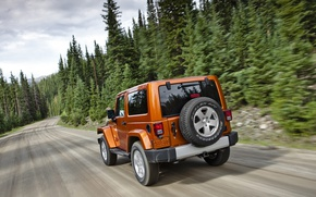 Picture road, forest, Wrangler, Jeep